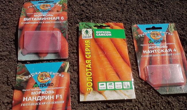 P050914_Морковь