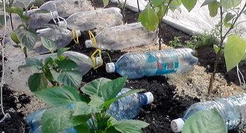 17_бутылки