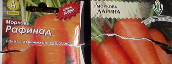 11_морковь1