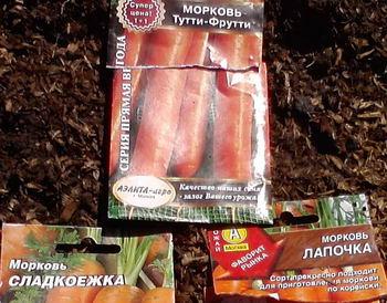 11_морковь2